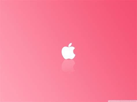 wallpaper pink free download download free pink wallpaper free hd wallpapers