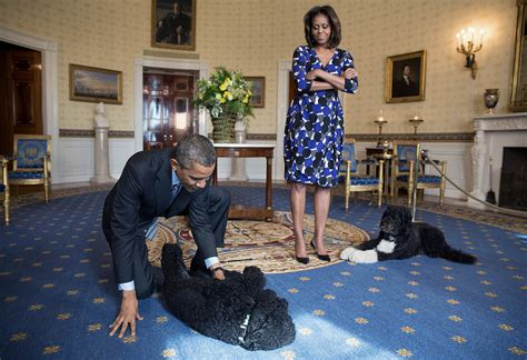 first dog white house first lady lets kids know how much she loves bo and sunny