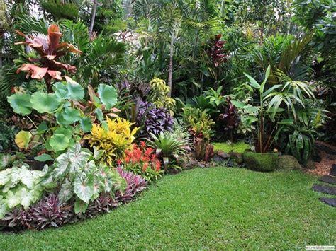 tropical gardening ideas tropical garden design gardennajwa