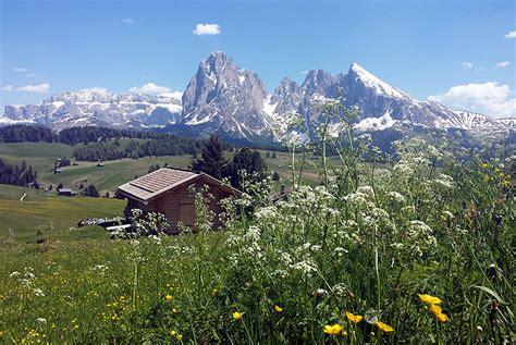 appartamenti christine alpe di siusi alpe di siusi hotel appartamenti prenota direttamente