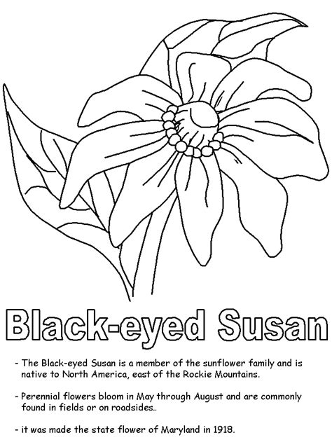 Maryland Coloring Pages Maryland A Unit Study Diyhomeschooler by Maryland Coloring Pages