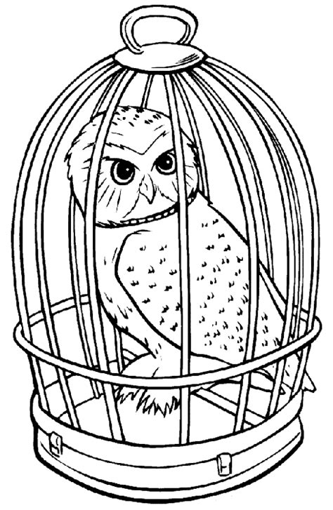 harry potter coloring book owl post harry potter owl coloring page harry potter patterns