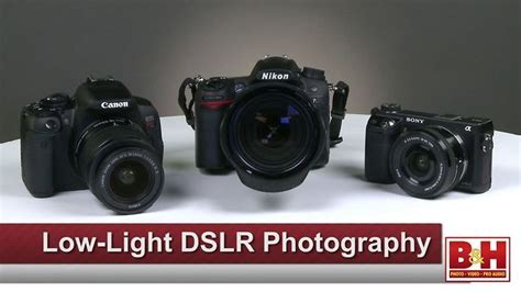 best low light dslr 17 best images about low iso on pinterest canon cameras