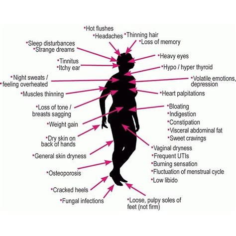 20 best images about menopause 20 best images about menopause on pinterest symptoms of