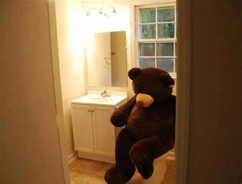 bear in a bathtub funny real estate a bear in the house hooked on houses
