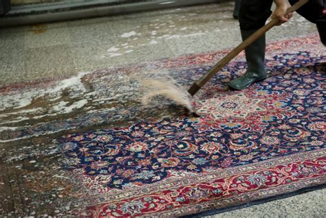 teppich reinigung teppichreinigung amm teppichreinigung n 252 rnberg und stuttgart