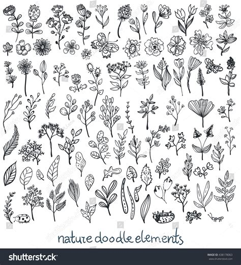 doodle nature doodle sketch nature collection elements flowers stock