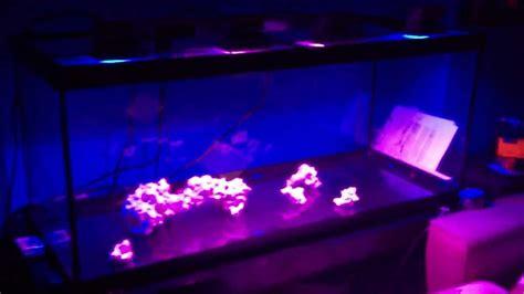 diy led reef light diy reef led flood light rgb