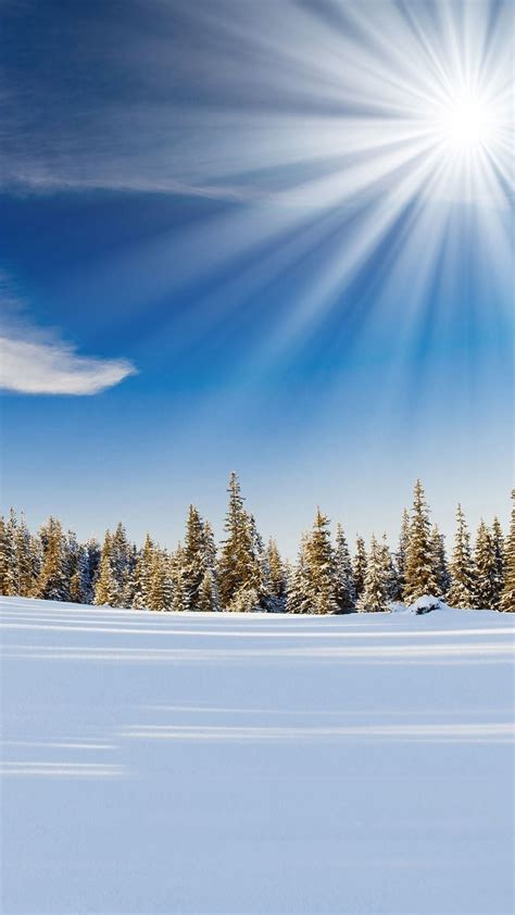 wallpaper for android nature sunlight over forest snow field android wallpaper free