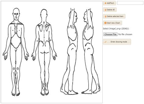 stron biz female body map template