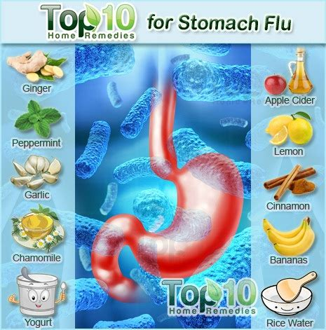 influenza or stomach flu gatroenteritis 2015 personal