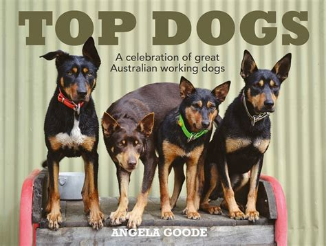 top dogs portraits and stories books reader prize draw win a copy of abc books quot top dogs