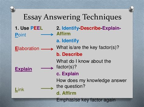 Simple Essay Structure by Basic Essay Structure For Chum