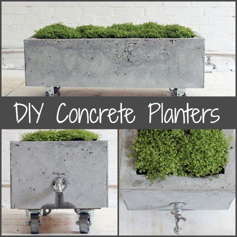 Make Your Own Concrete Planters by Diy Concrete Planters Diy Gift World