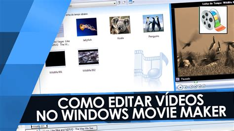 Tutorial Como Editar Videos No Windows Movie Maker | como editar no movie maker tutorial windows movie