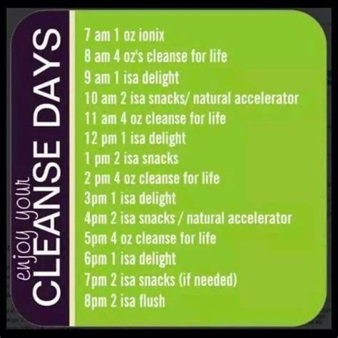 What Is Detox Like On Day 4 by Isagenix Cleanse Day Snack Ideas Plus Tips