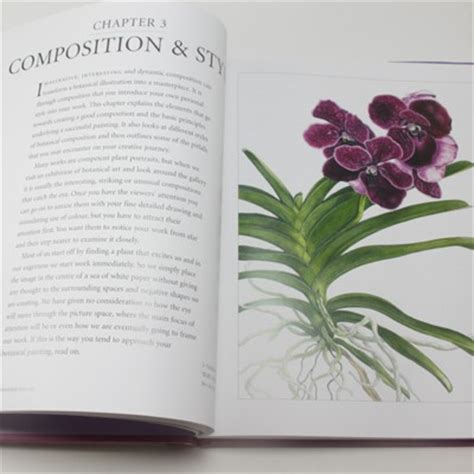 0007275528 botanical painting with coloured pencils botanical painting with coloured pencils by ann swan