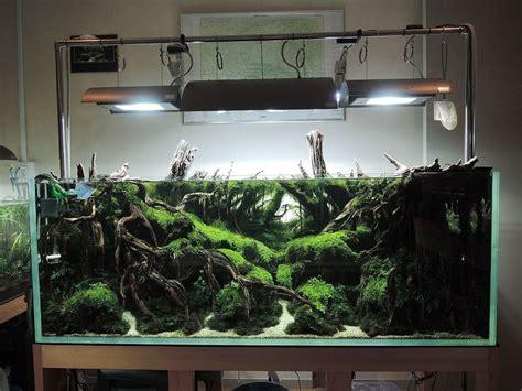 aquarium layout inspiration 造景之路 水草造景 120cm 113 田园漫步 walkingfarm 田园漫步 aquascape