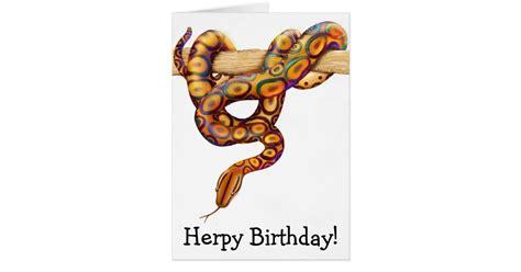 download mp3 boa happy birthday herps happy birthday rainbow boa snake card zazzle