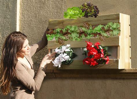 que plantar en casa huerto en casa aprende a cultivar tu huerto casero