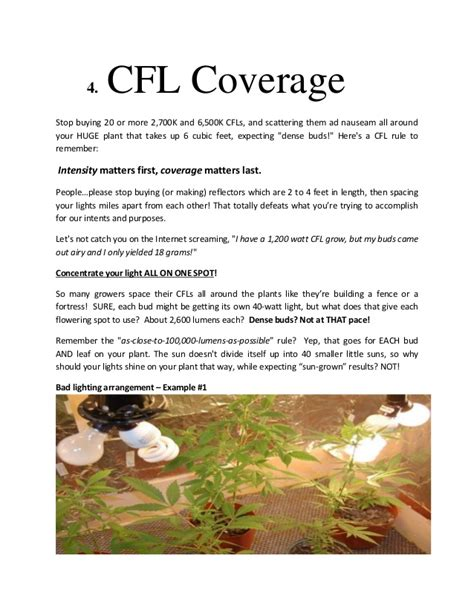 cfl ls for growing how to get dense potent buds cfl lighting
