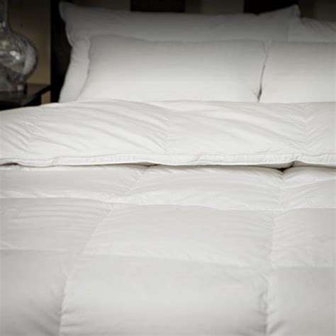 White Goose Comforter King by Allied Essentials 100 Cotton Premium Luxe White Goose
