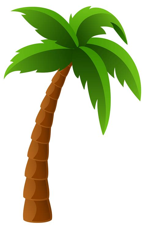 palm tree clip palm tree clipart transparent background pencil and in