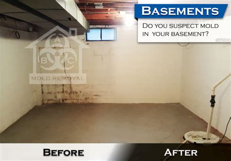 basement mildew removal basement mold removal 28 images mold removal mildew removal rochester buffalo basement mold