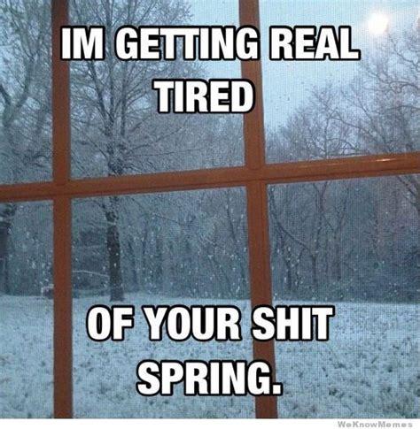 Getting Real Tired Of Your Bullshit Meme Generator - im getting real tired of your shit spring pictures photos