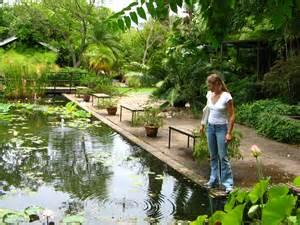 Stellenbosch Botanical Gardens File Stellenbosch Botanical Garden Pools Jpg Wikimedia Commons