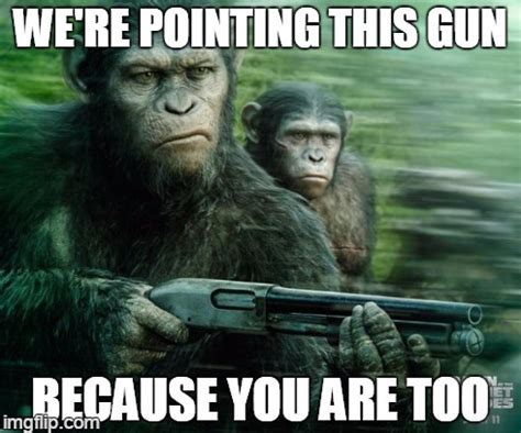 Chimp Meme - chimps imgflip