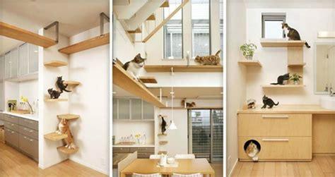 arredamenti gatto un arredo a misura di gatti cani e conigli okap 236