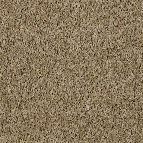 shaw anso carpet contemporary flooring portland by area floors