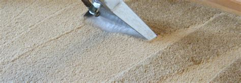 best carpet and upholstery cleaner home kc carpet and upholstery cleaners