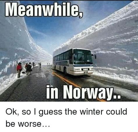 Norway Meme - meanwhile in norway ok so i guess the winter could be