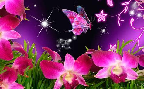 imagenes de rosas y mariposas bellas im 225 genes de mariposas rosas im 225 genes y fotos