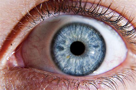 Eye Showing Fear 4243802 2048x1365 All For Desktop Eyeball Pics