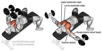 dumbbell fly exercise and weight