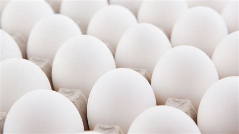 eggs sd exports