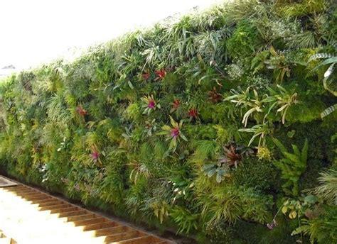 giardini verticali giardini verticali fai da te consigli tecniche su come