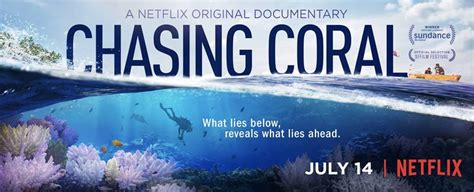Watch Chasing Coral 2017 Chasing Coral A Netflix Original Documentary