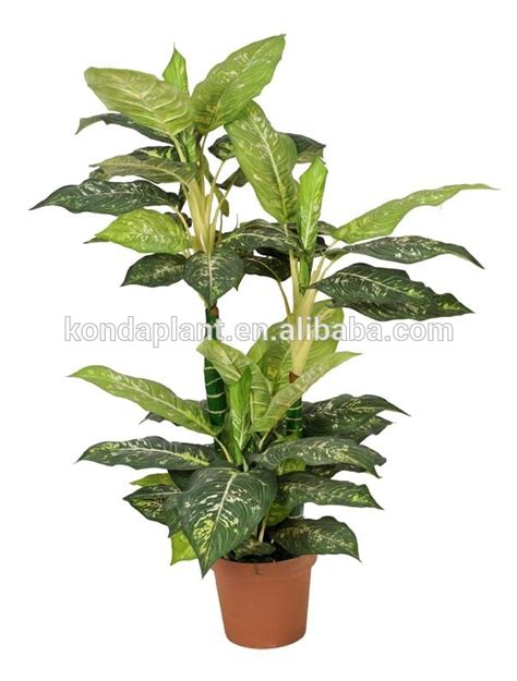 cheap indoor plants 2017 selling artificial green plants cheap indoor