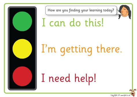 self assessment exle s pet displays 187 traffic light self assessment