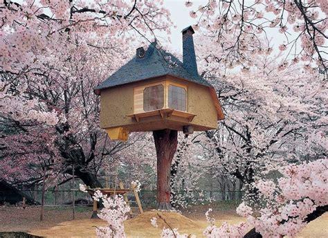 cherry tree house cherry blossom treehouse terunobu fujimori kiyoharu shirakaba museum hokuto japan playscapes