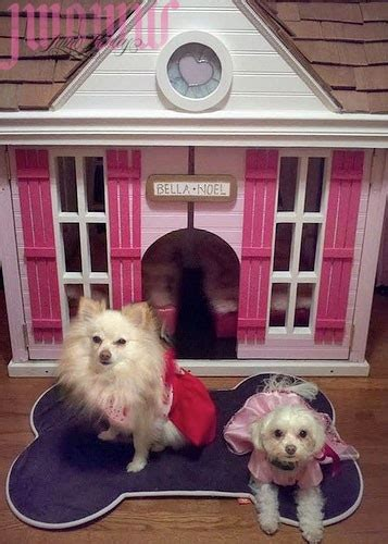 princess dog houses 25 best ideas about amazing dog houses on pinterest pet houses heated dog bed and
