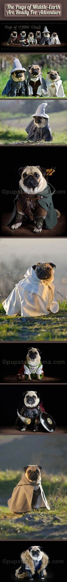 pug lord the nanny my favorite show thanks to my for showing