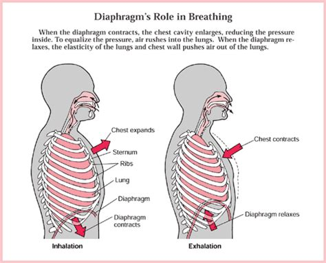 a deep breath will do you good langkawi yoga blog