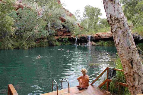 best australia tours wildlife tours safari in australia adventure tours