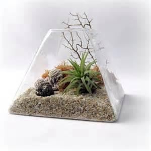 peach pyrite pyramid terrarium air plant terrarium by seaandasters etsy
