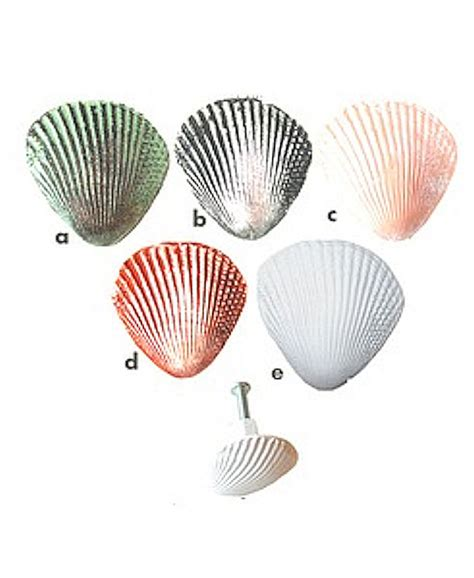 Seashell Door Knobs by Cabinet Drawer Knobs Pulls Sea Shell Knobs By Knobswares